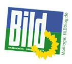 Grünes BILD-Logo (BILDblog-Montage)